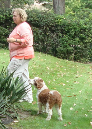 Dog Training North Shore